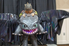 Hiccup-And-Toothless